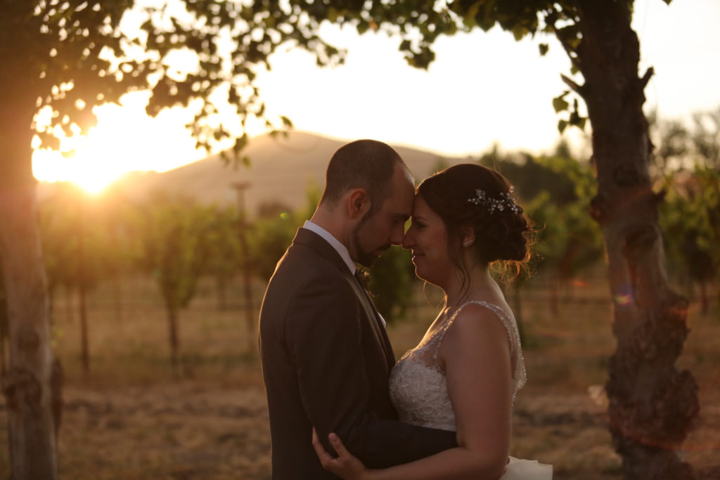 bride and groom during sunset photos cline cellars sonoma