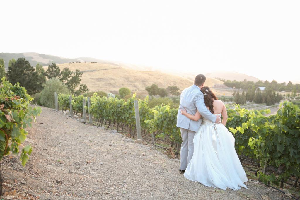 Viansa Winery Wedding