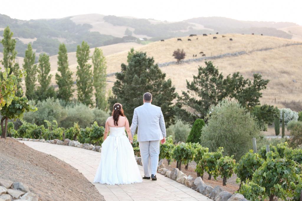 bride and groom at viansa sonoma wedding