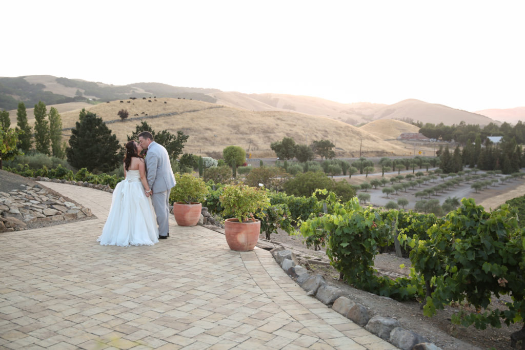 newlyweds portraits at Viansa sonoma