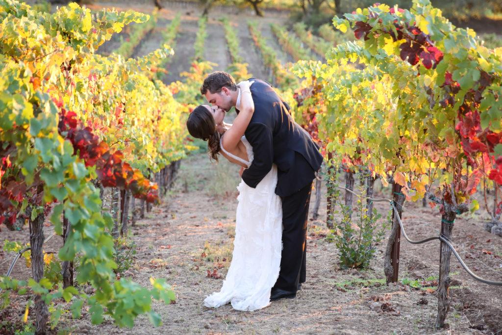 top paradise ridge winery wedding photographer